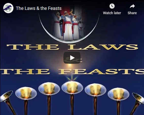 The Law and the Feasts